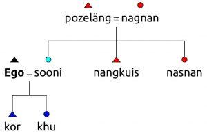 Diagramme de parenté avec la belle-famille en greedien ancien.